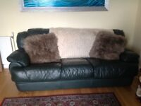 Dark green leather sofa