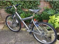 26in wheel bike