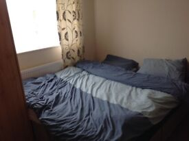Single room in chilled out family home