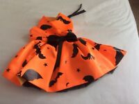 Charming Halloween Outfit for small dog. Fit chihuahua/ toy poodle.