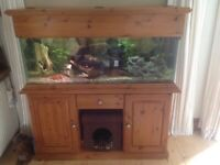 4 foot Tropical fish tank on pine cabinetry with matching top.