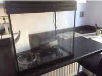 Aqua 45 Aquarium