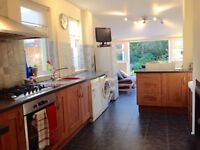 Kitchen Doors - Laminate wood effect