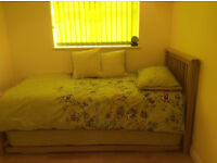Single Bright & Beautiful room to let