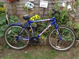 Exodus Hype mountain bike
