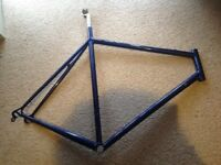 Francesco moser leader ax bike frame