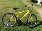 "Daewoo Synergy 19"" frame bicycle"