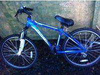 Python mountain bike 22 inch wheels, front shocks