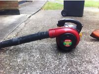 Ryobi leaf blower great working order please contact for any more details. Only selling as new job.