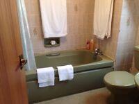Avacado Bathroom Suite