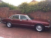 Jaguar XJ40 Soverign for sale
