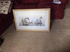 Limited edition print by Ian Nathan, swans