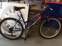 Ladies 18in Bike
