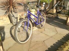 Ladies Marin Bollinas Ridge cycle with 19inch frame