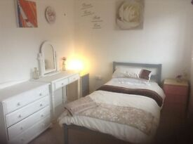 Double room available near to NNUH UEA and Research Park