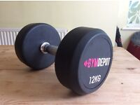 Gymdepot 12Kg Dumbbell weight
