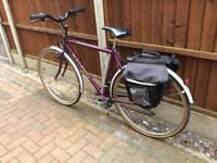 Men's Raleigh pioneer classic bicycle, 15 speed gears, full mudguards, rear rack with saddle bags.