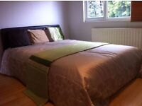 Beautiful double room is available to rent in a professional house share