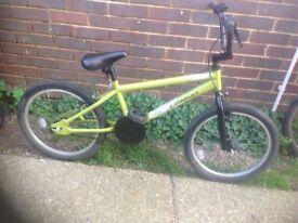 Katapult BMX Cycle