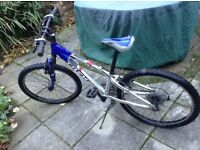 Boy's Trek bike