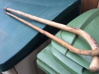 Free walking sticks two
