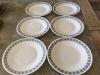 Pyrex dinner plates