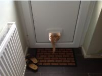Cat Flap as New but used