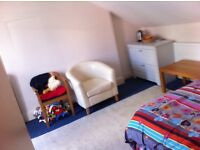 BIG SPACIOUS DOUBLE ROOM***SAFE LOCATION***MINUTES TO CENTRAL LONDON***CLEAN QUIET HOUSE