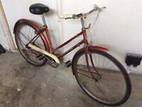 8ba64a5d122 Ladies bicycle - Triumph