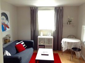 GALASHIELS. LOVELY CENTRAL FULLY MODERNISED ONE BEDROOM FLAT. £79 WEEKLY ONLY £100 DEPOSIT