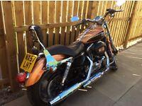 Harley Davidson Sporster 1200 105th Anniversary Model