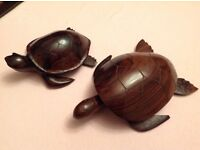 A Hardwood Tortoise and Turkel from Hawaii