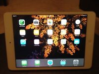 iPad Mini 12.6 GB & Ted Baker magnetic cover