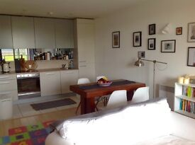 Superb 1 bedroom flat to rent