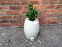 Vintage barrel shaped quirky garden planter pot