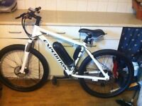 Eco Expedition Electric Mountain bike