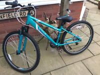 "Apollo Entice 14"" Ladies/Older Girls Mountain Bike"