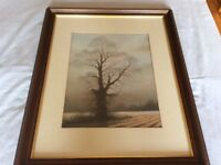 Framed picture of tree in winter