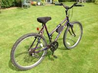 Ladies Raleigh town and country mountain bike complete with cycle lock.