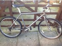 Mans specialised 21 speed mountain bike £20