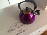 Kettle Bright Purple Hob Gas Electric Brand new