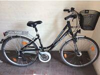 27 Dutch style Rayleigh bike