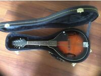 Oldfield Mandolin + hardcase