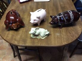 Four lovely pigs