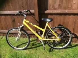 Ladies Raleigh Siren 21 speed mountain bike