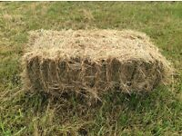 Hay Bales. Meadow hay of excellent quality