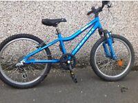 Ridgeback MX20 Blue 2014 Kids Bike
