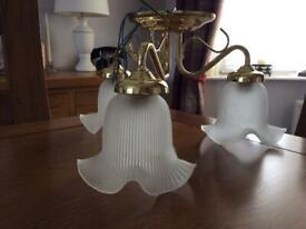 Pendant chandelier light lamp