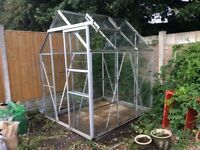 Greenhouse 6' x 5' including shelving