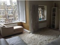Central Zone 1 Bloomsbury garden flat with balcony. Light-filled and fabulous